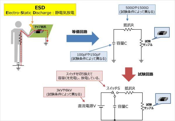 ESDについて